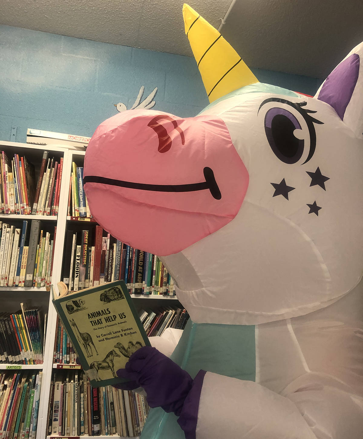 Eunice the Unicorn likes many of the same things the students do, including reading an interesting book. She is an important part of the school community, delighting staff and students at Cornerstone Christian School in Abbotsford. (Submitted)